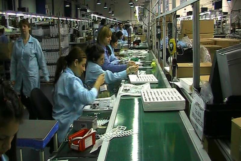 Las mujeres mandan en las l neas de producci n de for Produccion de plantas ornamentales pdf