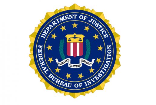 El FBI, en la mira de los partidos piratas por el cierre de Megaupload.