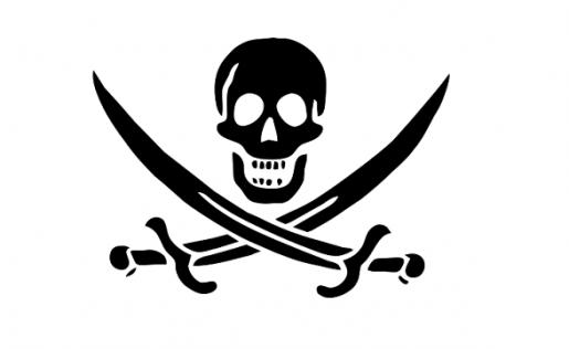 Estados Unidos reclama medidas más efectivas contra la piratería.