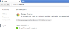 google-chrome-28