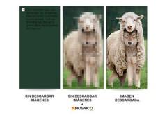 """En esta imagen se puede ver el """"paso intermedio"""" entre el bloqueo y el desbloqueo de imágenes propuesto por Mosaico."""