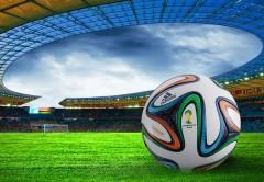 mundial-brasil-estadio-pelota