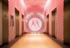 Shamu es todavía un misterio, pero podría ser pieza clave para el futuro de Motorola.