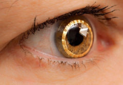 1lector-iris-biometria