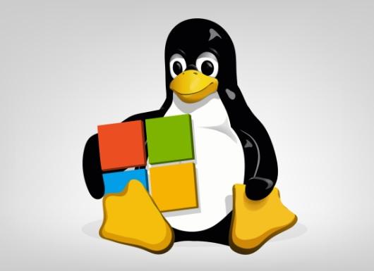 Microsoft anuncia alianzas con Linux,Google y Samsung