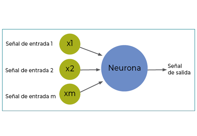 Informe Users 162 Deep Learning