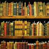 Toda una biblioteca en la palma de la mano.
